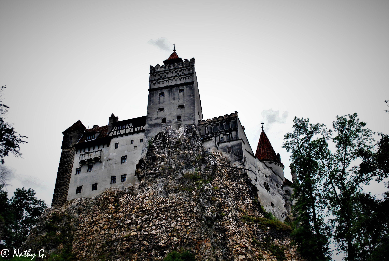Dracula S Castle Brasov Romania Dracula Castles Romania Summer Landscape Germany Castles Gothic Castle Dracula Castle