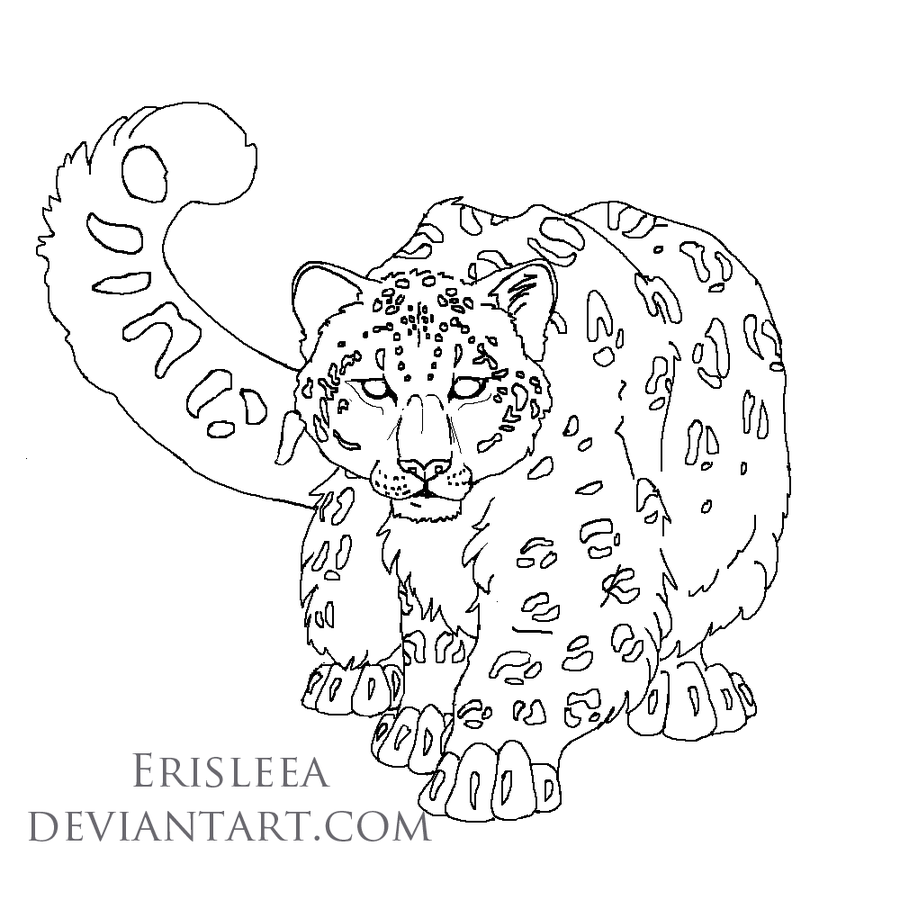Snow leopard lineart for mangojellygirl by erisleea djf