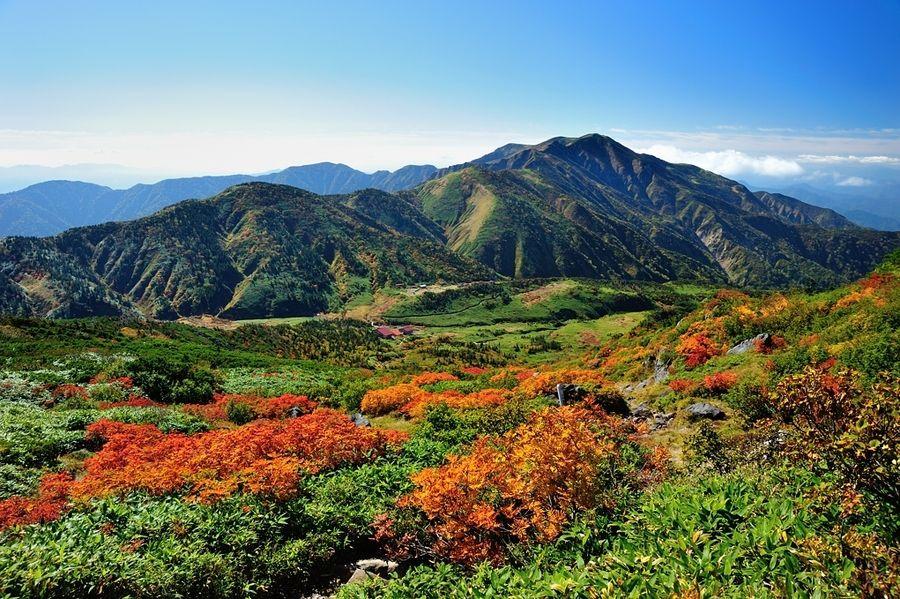 Autumn leaves / Mt.HAKUSAN