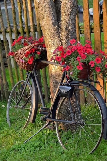 20 Diy Ideas To Recycle Bikes For Blooming Yard Decorations Bicycle Decor Yard Decor Garden Decor