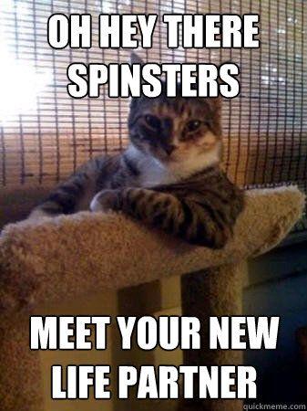 نتيجة بحث الصور عن memes for spinster