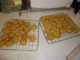 Iris S Low Protein Dog Cookies Recipe Dog Biscuit Recipes Dog