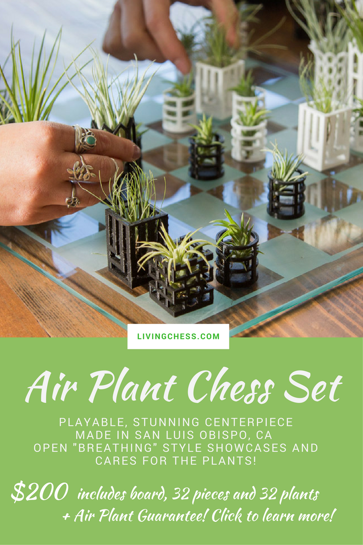 Playable Plant Chess Set Is A Stunning Centerpiece Perfect To Start