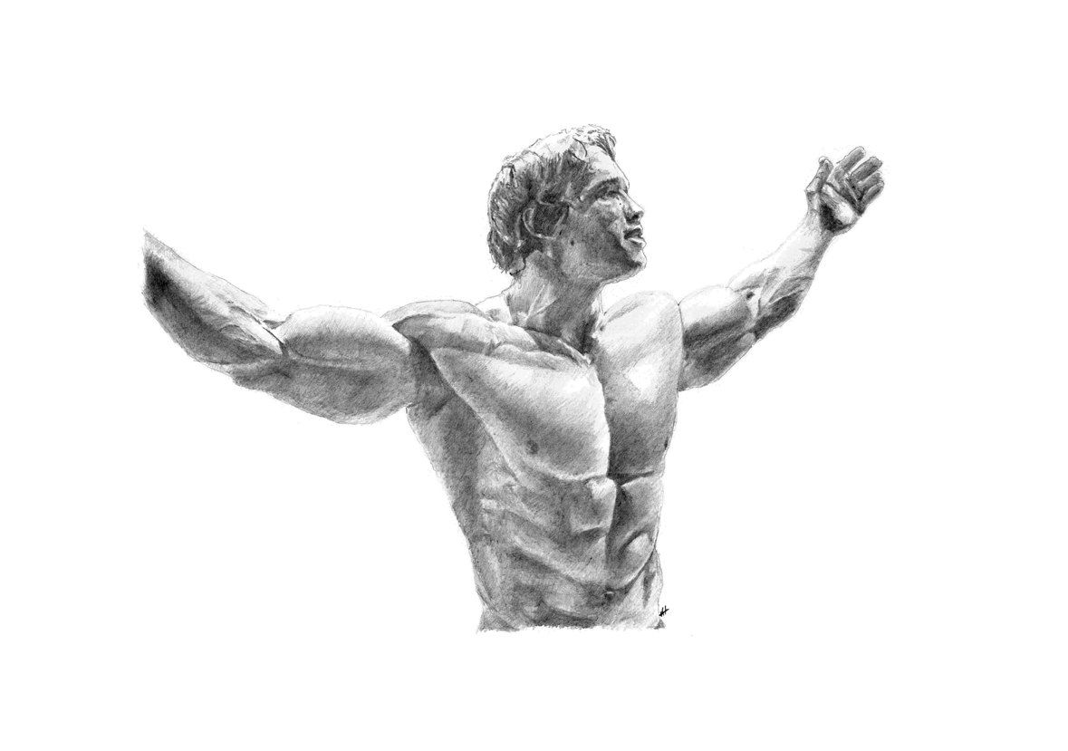 Arnold Sketch Drawing
