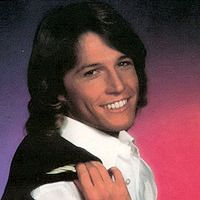 Andy Gibb Wow Did I Love Him Andy Gibb Andy Gibb Bee