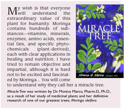 Miracle Tree was written by Dr. Monica Marcu