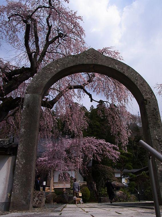 長谷寺(ちょうこくじ)の石の山門。一つの石から切りだされたとか。