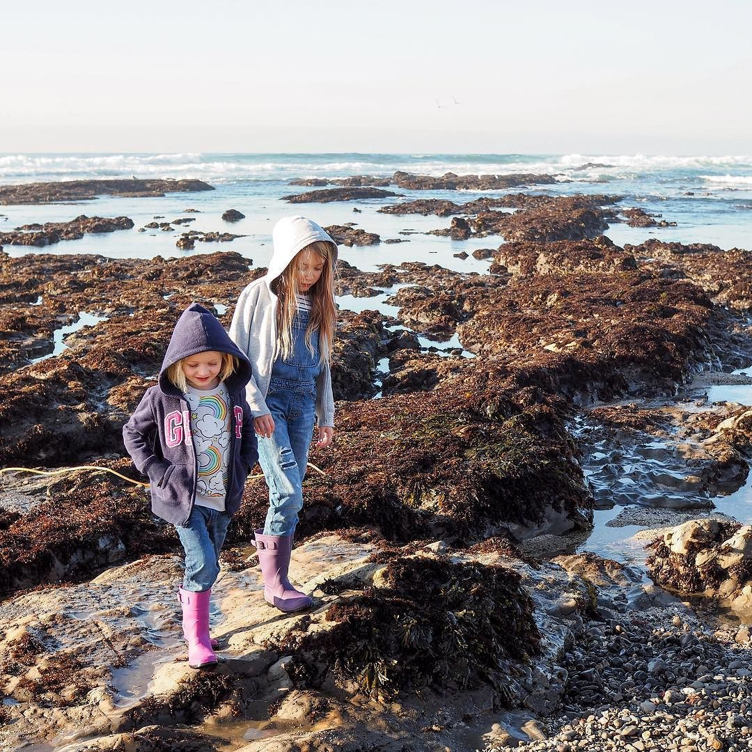 On The Blog I M Sharing Our Visit To Fitzgerald Marine Reserve A Short Drive South Of San Francisco If You Re In The Bay Area Th Kid Friendly Fun Bay Area Bay