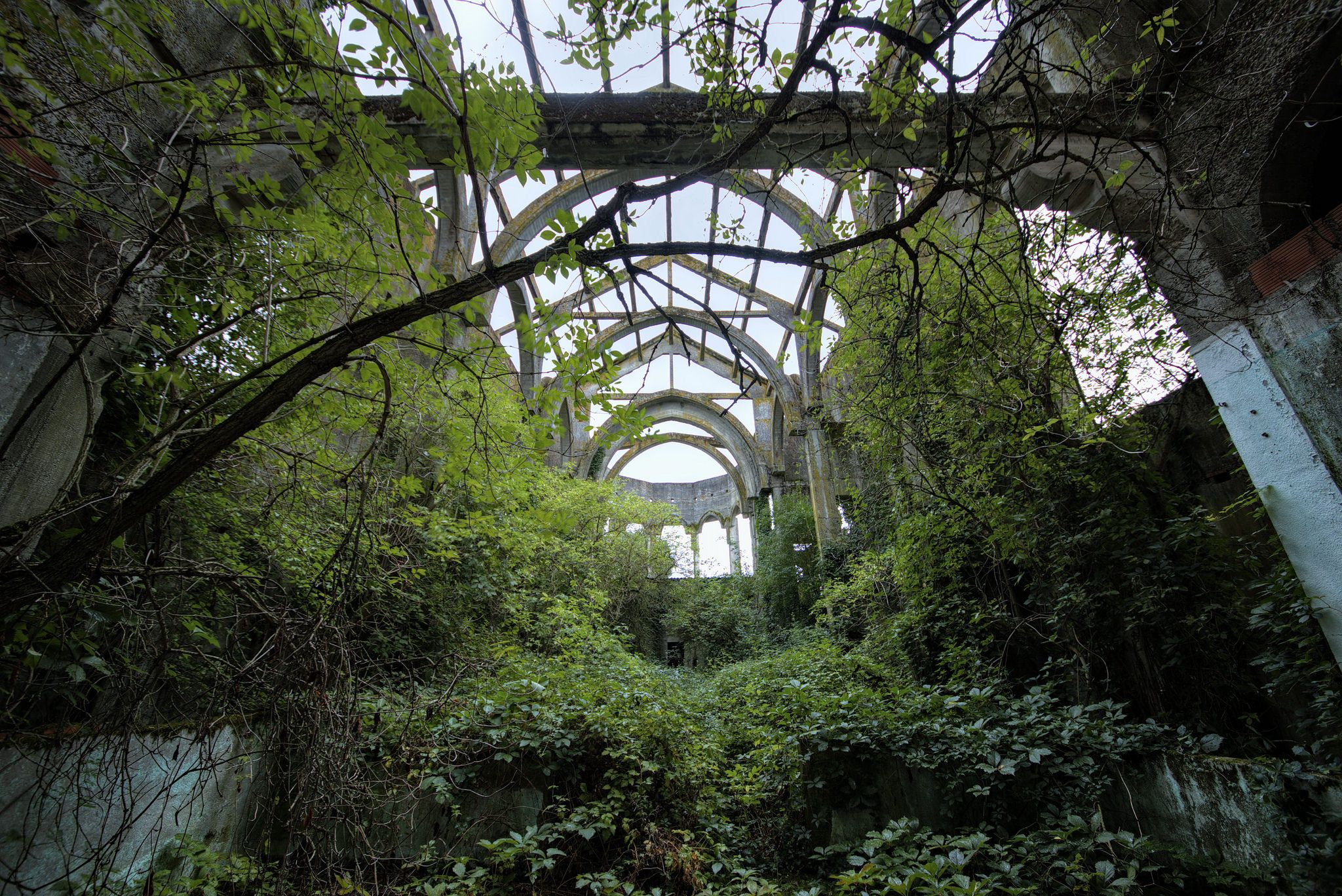 The Overgrown Ruins Of A Church [20481368] By Lauric Gourbal