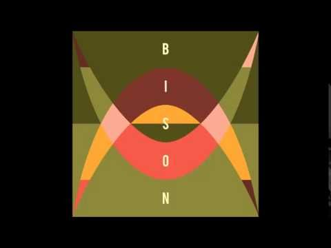 Bison Familiar Stranger Day Music Bison Regrets
