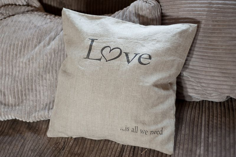 pillow with quote