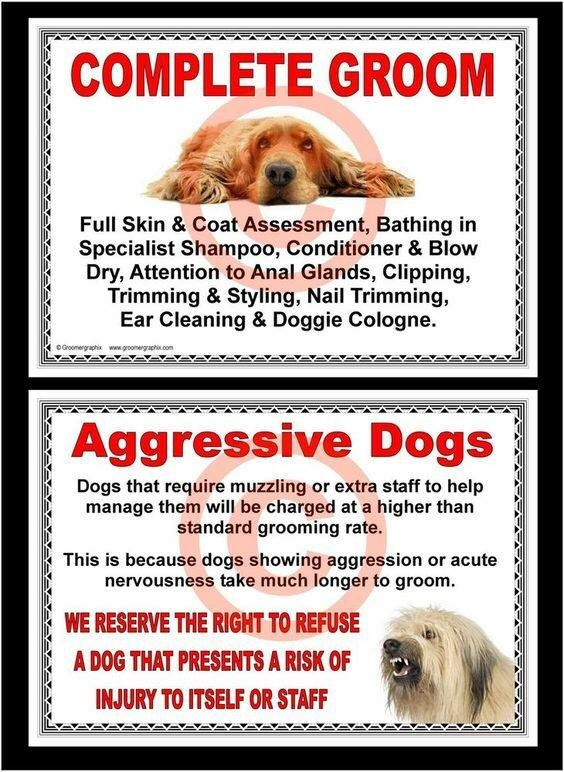 Need in any shop | Dog Grooming | Dog grooming shop, Dog