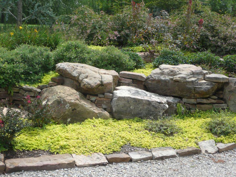 boulders in landscaping redbud