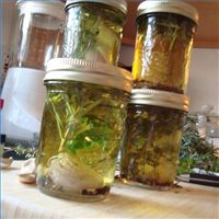 SeacoastKidsCalendar.com >> Inexpensive holiday gifts. Homemade olive oils!