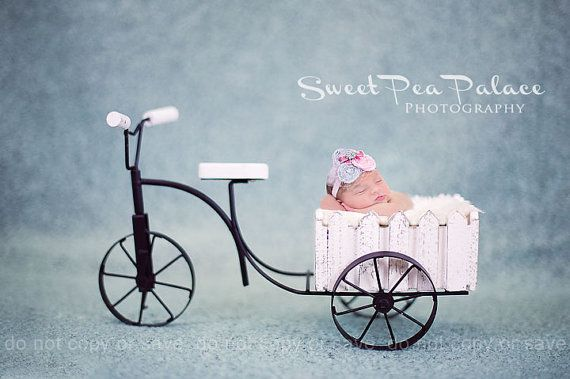 Instant Download Photography Prop -- Bicycle Garden Cart -- DIGITAL BACKDROP for Photographers #backdropsforphotographs