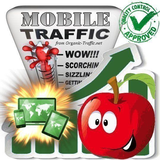 Buy Mobile Traffic Visitors Traffic Mix Seo Ranking