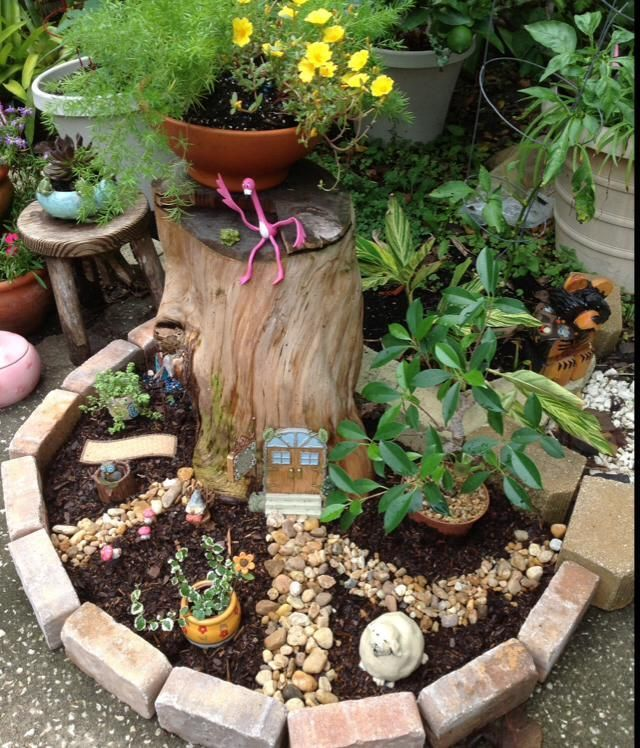 Dress up those unsightly stumps with a mini garden mini jardines
