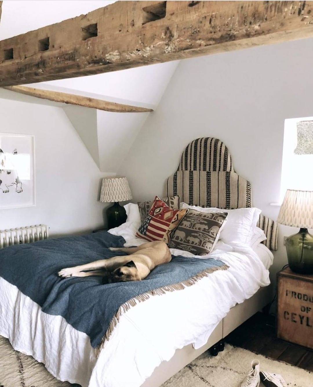 Today S Mood One Of Our Four Legged Friends Getting Comfy In Farmhouse Loft Photo By Boho