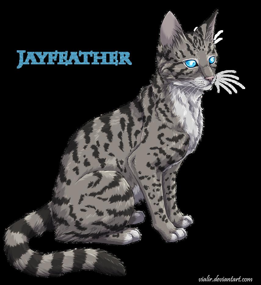 Jayfeather by Vialir Koty