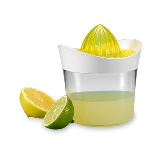 Lis na citrusy 2 v 1