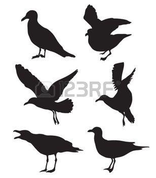 Set of seagulls silhouettes photo