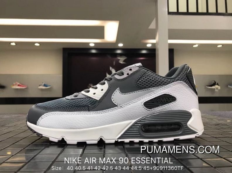 fb609c0600832 Nike Air Max 90 Essential 537384-073 Mens Retro Running Shoes COOL GREY WOLF  GREY-PURE PLATINUM-WHITE Free Shipping