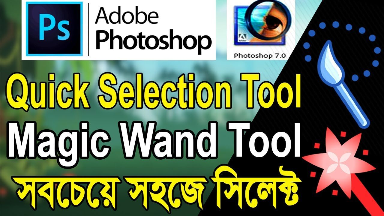 Photo, Image or Picture Quick Selection Tool Magic Wand