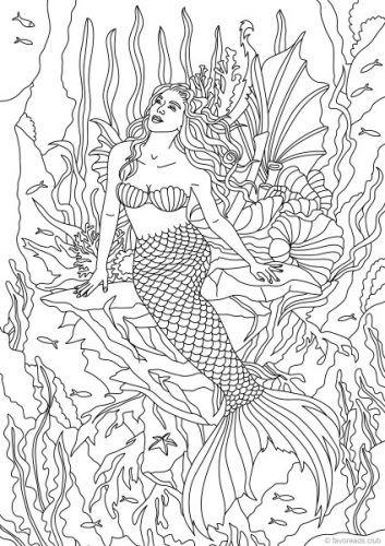 Ocean Life Mermaid Colouring Page Mermaid Coloring Pages Coloring Pages Animal Coloring Pages