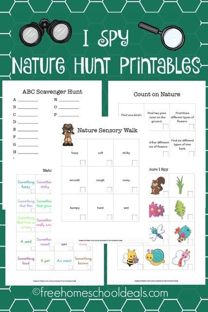 free i spy nature study printables instant download. Black Bedroom Furniture Sets. Home Design Ideas