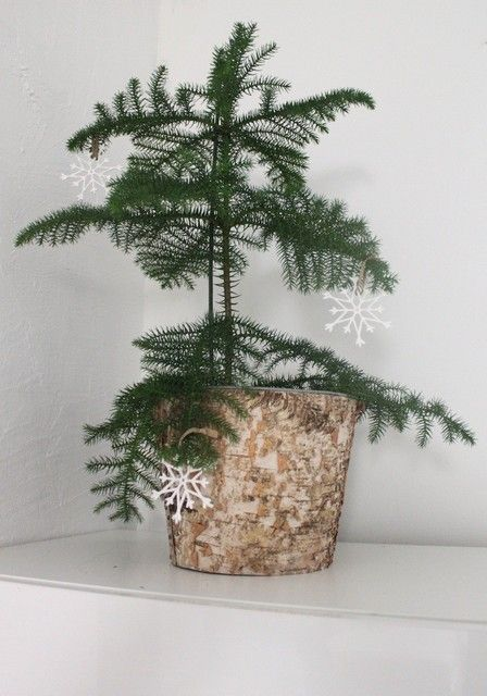Minimalistic, scandinavian Christmas. <3 Picture from my blog, http://vastarintama.casablogit.fi.