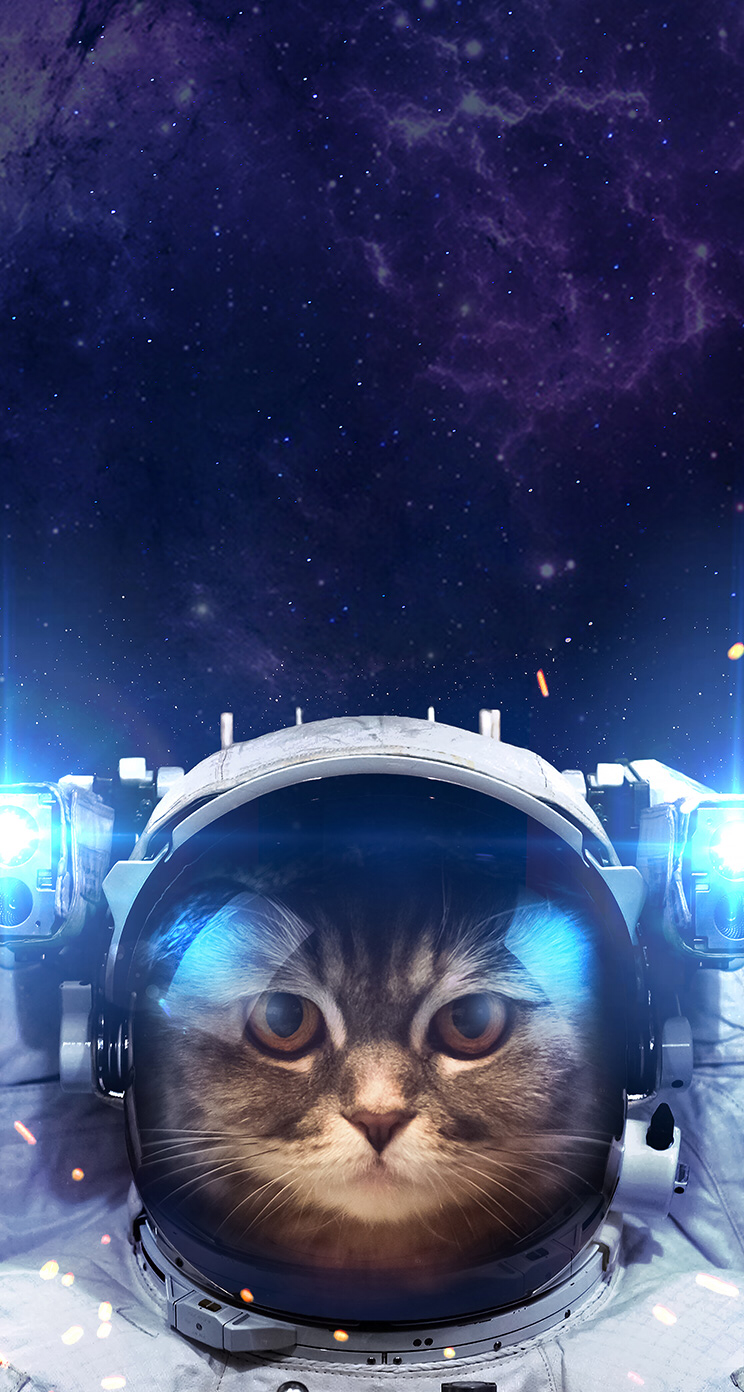 You Are Not Alone Space Cat Space Cat Astronaut