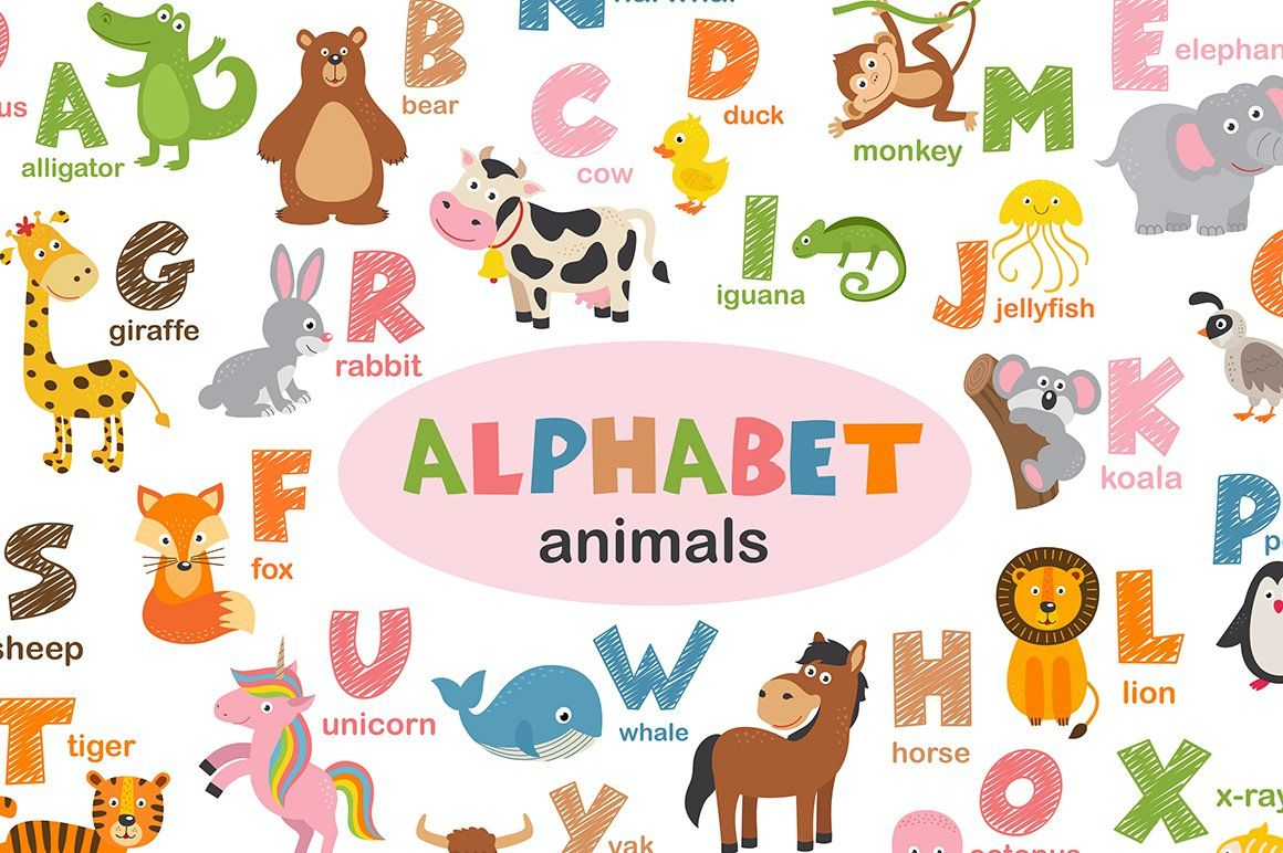 Alphabet With Animals Animal Instagram Animal Alphabet Pet Fox