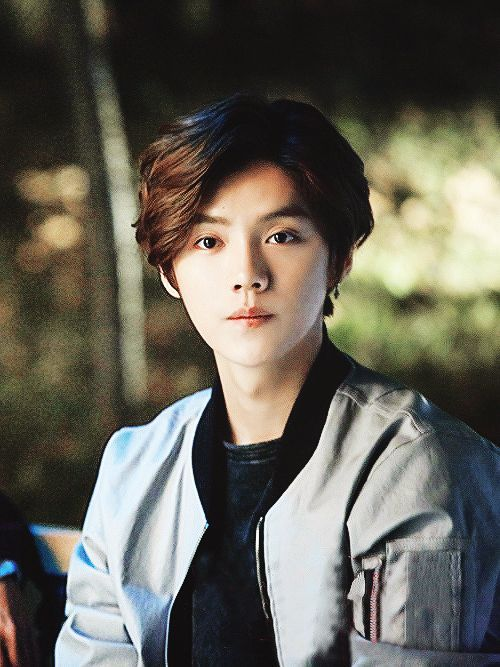 Xi Luhan please always be alright Luhan | ルハン, エクソ, 小鹿