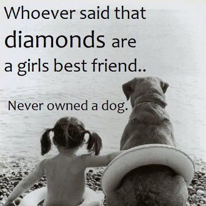 Quotes About A Girl And Her Dog Quote  Whoever Said That Diamonds Are A Girl's Best Friend Never .