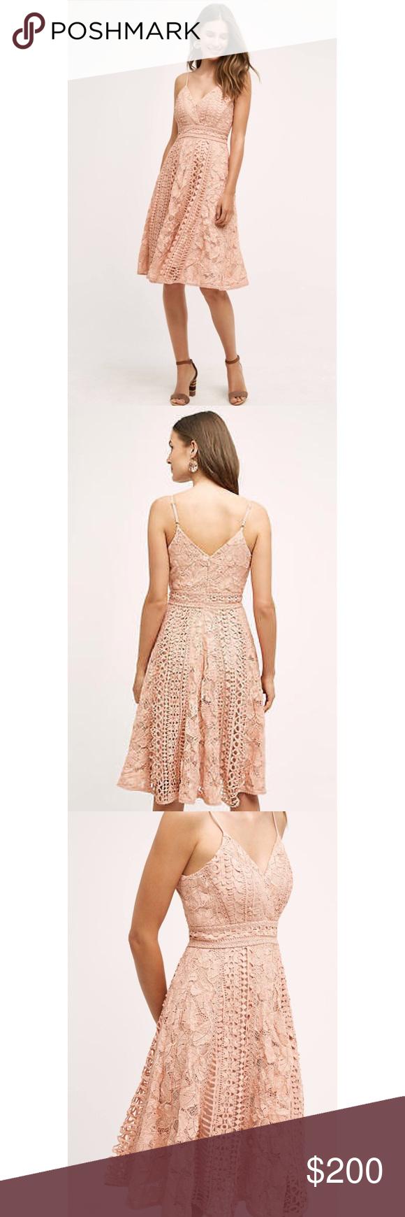 Anthropologie astrid dress nwt pinterest lace design blush pink