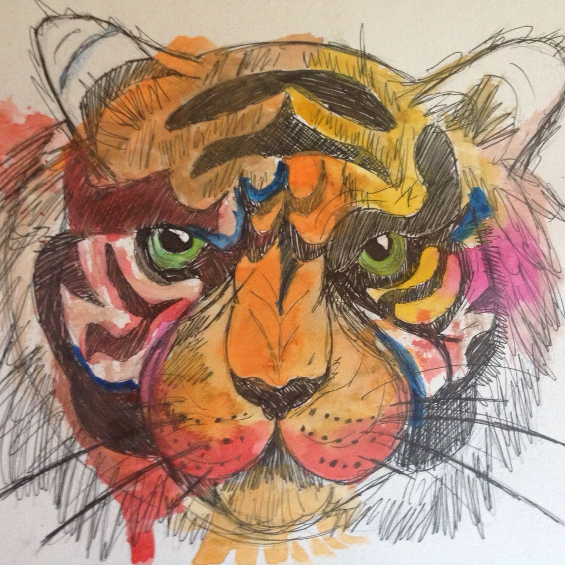 Tiger by Aria Olson