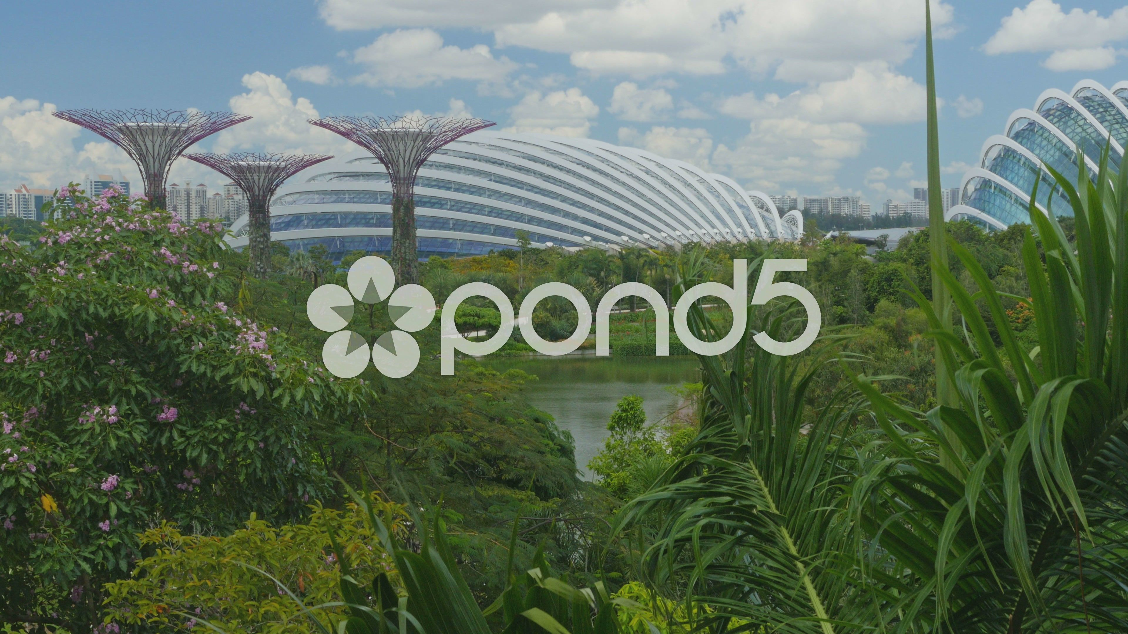 4k Singapore Park Gardens By The Bay With It S Famous Supertrees Crane Up Stock Footage Gardens Bay Singapore Stock Footage Chocolate Cat Gardens By The Bay