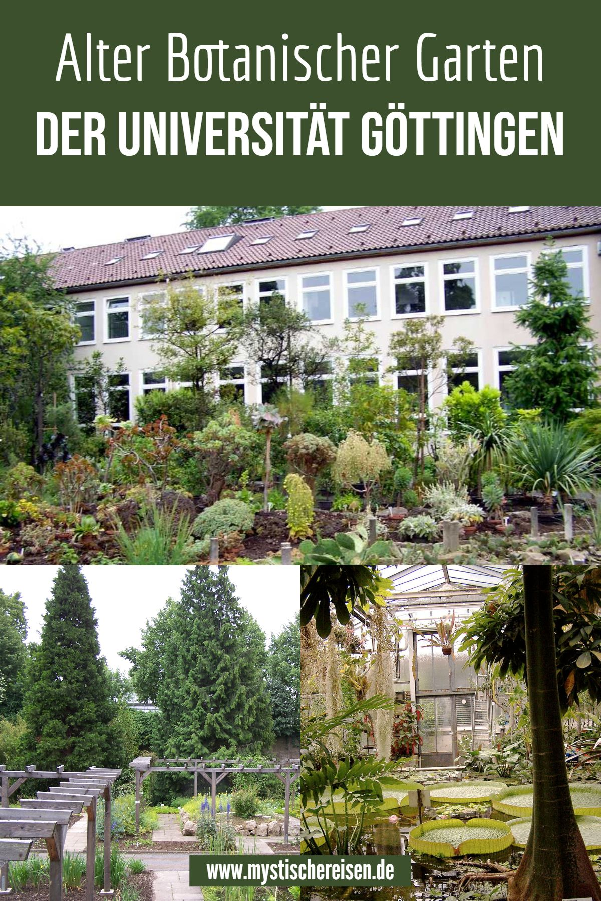 Alter Botanischer Garten Der Universitat Gottingen Botanischer Garten Urlaub Reisen Sehenswurdigkeiten