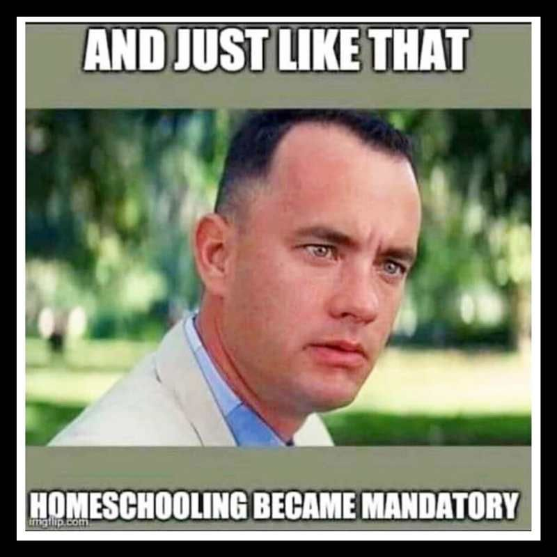 25 Funny Homeschool Memes 2020 Remote Learning Laughs In 2020