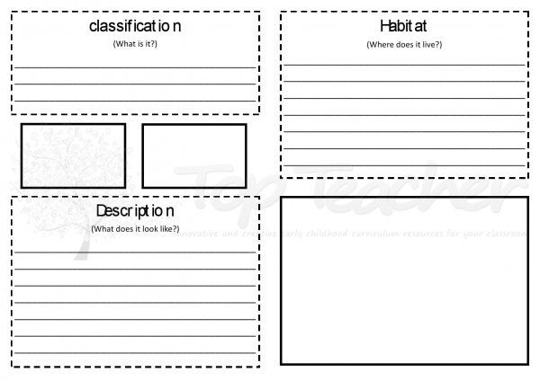 Animal Report Template Animal Report Booklet Hard With Images