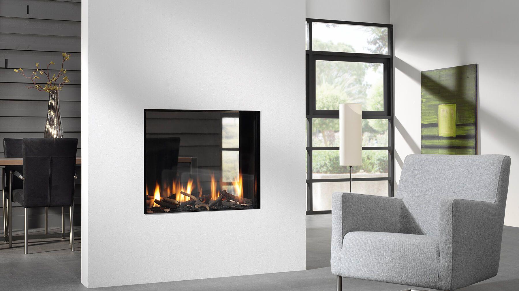 BioVision+Balanced+Flue+Gas+Fire Gas fireplace, Double