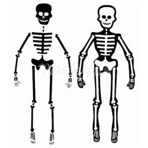 skeleton image simple | to draw | pinterest | simple, skeletons, Skeleton