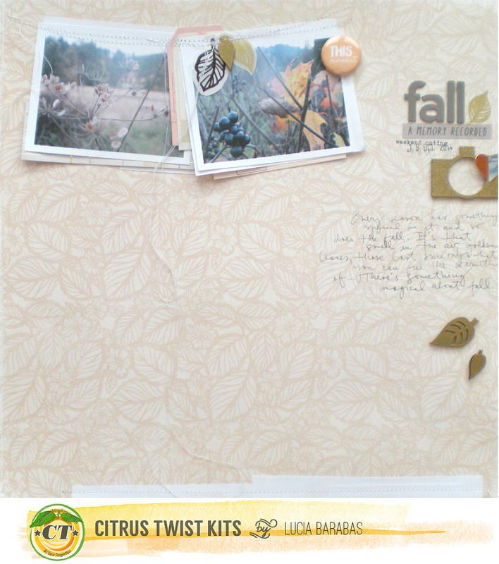Citrus Twist Kits November Projects