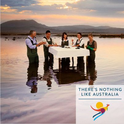 Explore the oyster beds at the Freycinet Marine Oyster Farm in Tasmania, Australia. Sample the freshly shucked oysters on-site, served with a glass of champagne.  Do you have an adventurous appetite and a love for travel? Contact our destination experts at 022-66153477 or email us on outbound@mercurytravels.in for a culinary experience like no other. #Tasmania #RestaurantAustralia