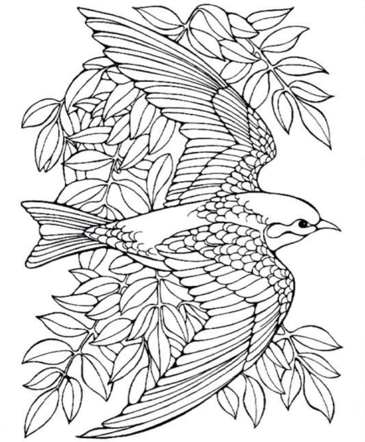 Pin By Mandie Schroeder On Art Bird Coloring Pages Mandala Coloring Pages Animal Coloring Pages