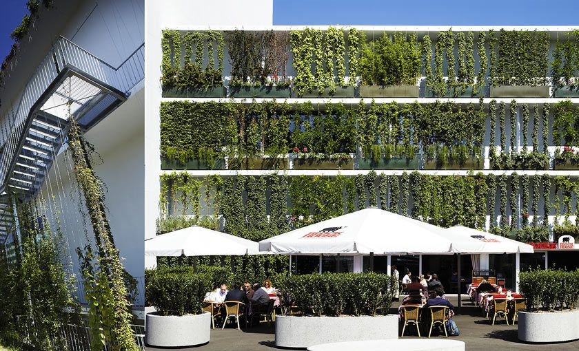 Fassadenbegr nung mit seilfachwerk future urban gardening vertical farming vertical garden - Grune architektur ...