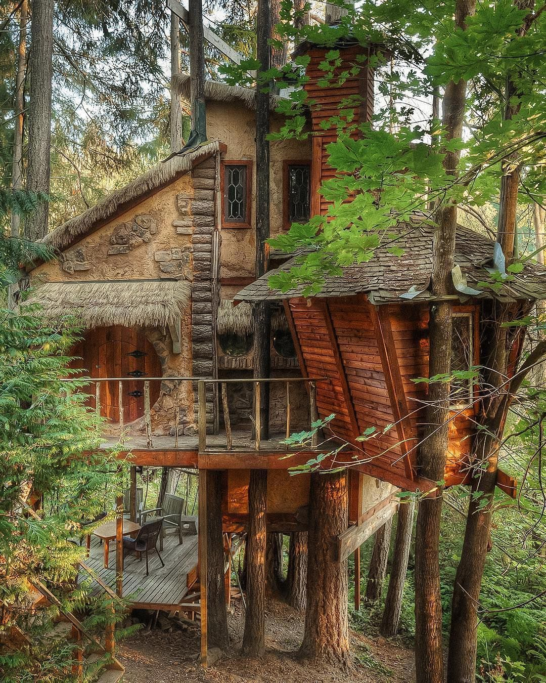 Tree House, Seattle. Photo By @lorefave…""