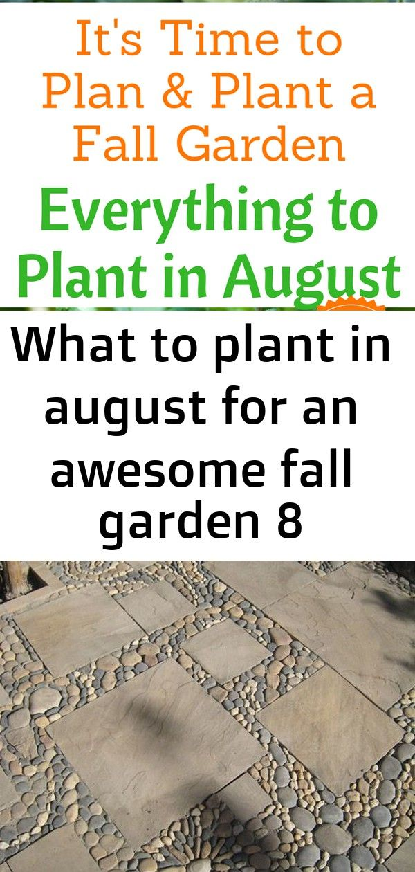 What to plant in august for an awesome fall garden 8 Everything to Plant in August Zone 1 2 3 4 5 6 7 8 9 and 10 Plan and Plant Your Fall Garden Now STYLED STONE PATIO LL...