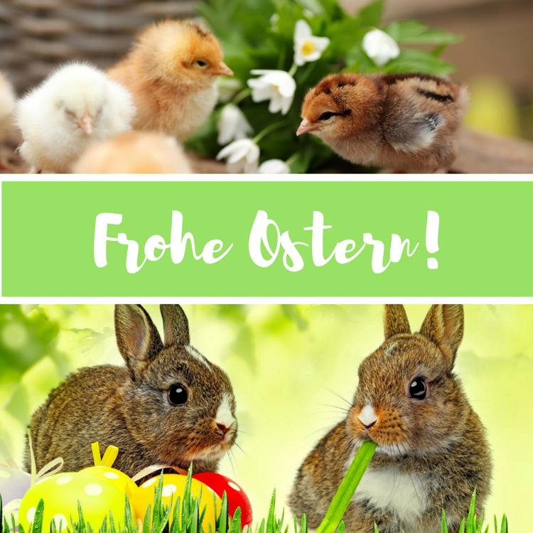 frohe ostern grüße bilder Männer Küken Hasen #Easter #spring #happy ...