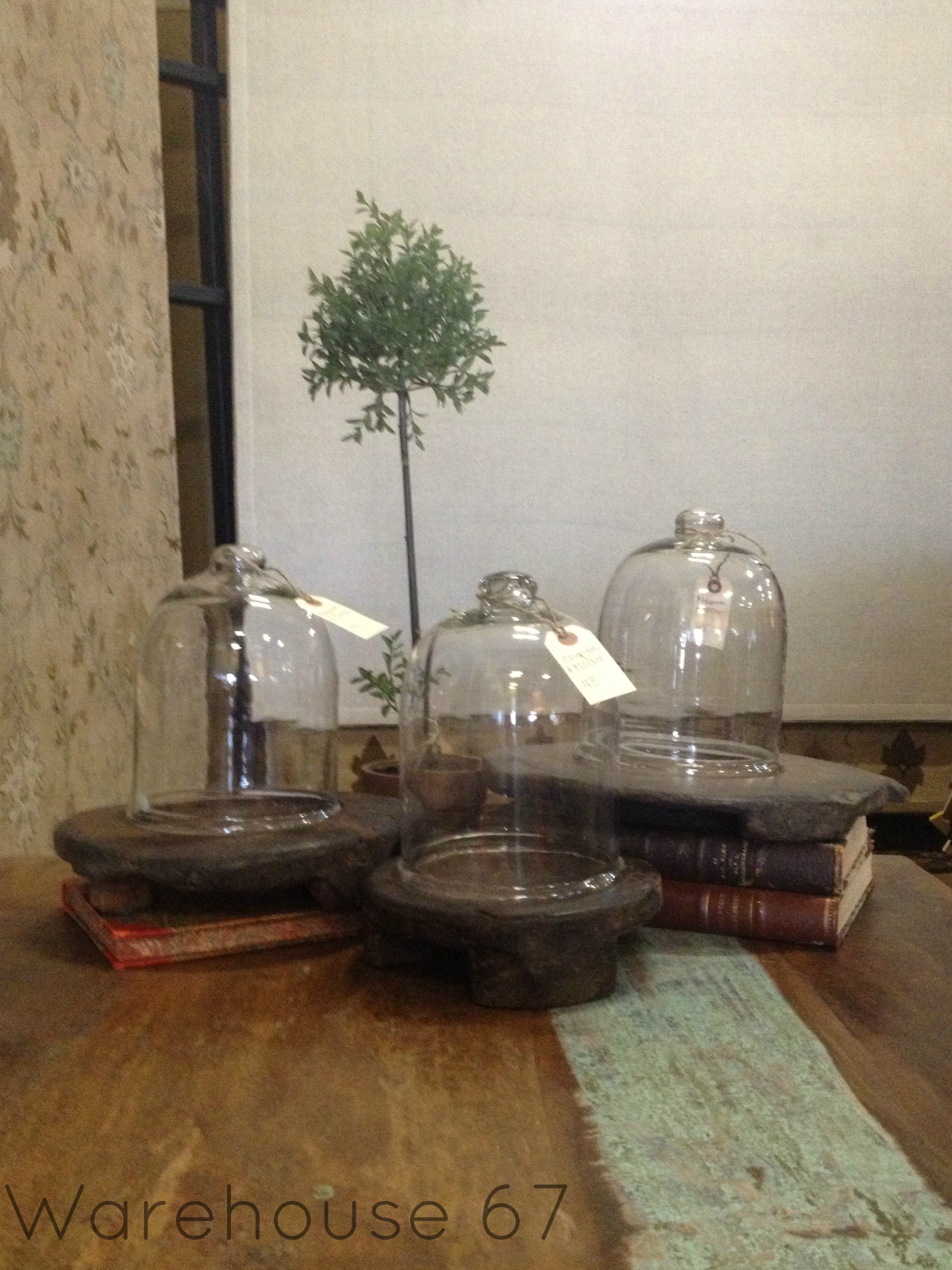 Tempting Chapatti Plate & Cloches here at Warehouse 67! Only $43 for a set!  www.Warehouse67design.com